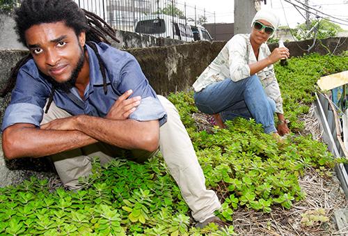 CI RIO DE JANEIRO)RJ) - 10/11/2015 - Telhados Verdes, pontos de vans no Vidigal - Na foto, o arquiteto Carlos Augusto Graciano (camisa jeans). Foto Carlos Moraes/Extra
